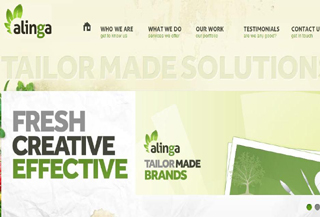Alinga Web Media Design