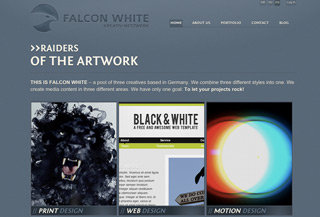 Falcon White