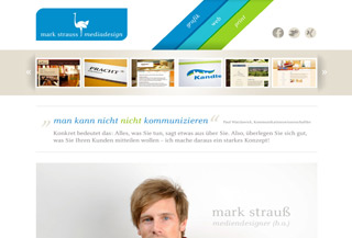 mark strauss mediadesign