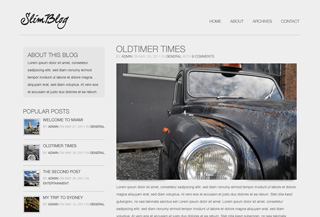 SlimBlog WordPress Theme
