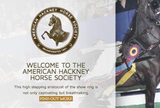 American Hackney Horse Society