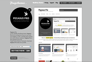 Pegasus Pro WordPress Theme