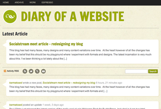 Diary of a website