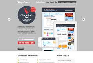 Chameleon Pro WordPress theme
