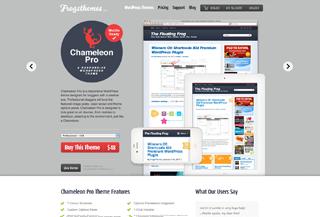 Chameleon Pro WordPress theme