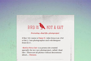 Bird is Not a Cat