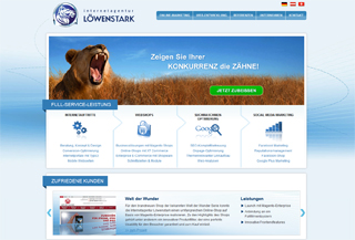 Internetagentur Löwenstark