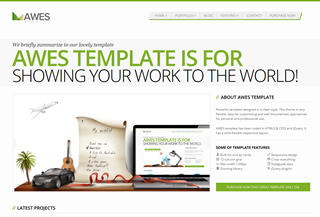 AWES - Responsive HTML Template