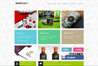 MoonLight HTML Template