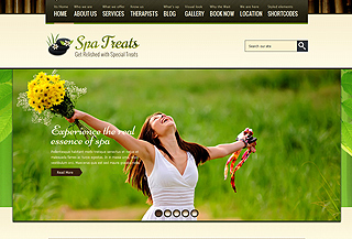 SPA Treats- Premium WP theme