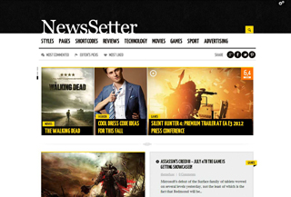 NewsSetter - Premium Theme