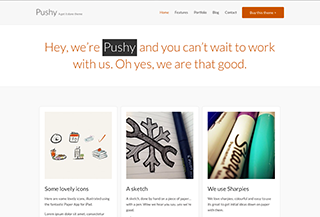 Pushy Premium WordPress Theme