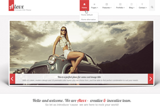 Alexx - Multipurpose HTML5 Theme