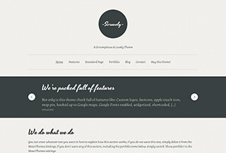 Scruvely Premium WordPress Theme