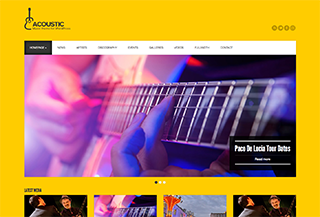 Acoustic - Music WordPress Theme