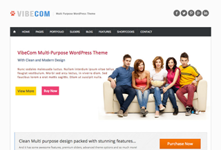 VibeCom MultiPurpose WP Theme