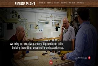 Figure Plant
