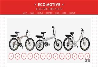 Eco Motive