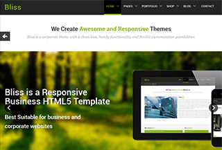 Bliss - Business HTML5 Theme