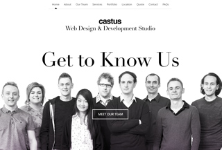 Castus Web Design Studio