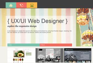 UX/IU Designer