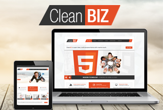 CleanBIZ Mutipuropse WP Theme