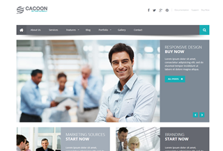Cacoon Responsive WP Theme