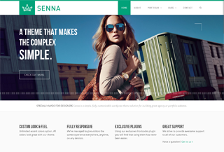 Senna Responsive Portfolio