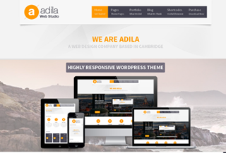 Adila Premium WordPress Theme