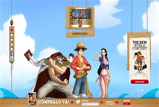 One Piece Pirate