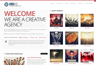 More WordPress Theme
