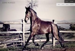 Sirai Horses