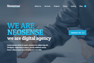 Neosense - WordPress theme