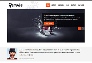 Revoke WordPress Theme