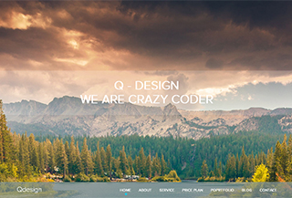 QDesign OnePage Theme