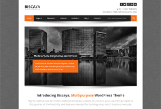Biscaya WP Theme