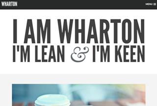 Wharton Premium WP Theme