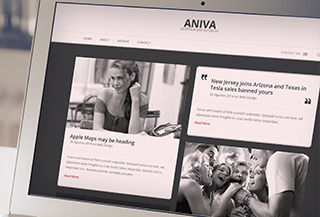 Aniva WordPress Blog Theme