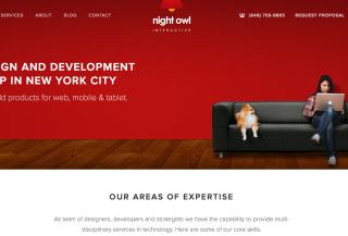 Night Owl Interactive