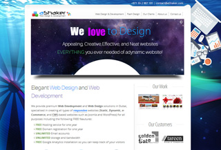 Web Design Company in Dubai