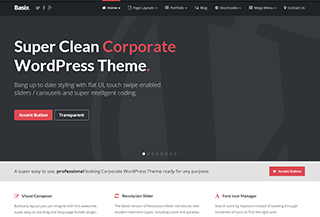 Basix - Corporate WP Theme