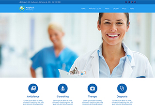 Medpark Medicine Theme