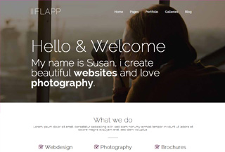 Flapp WordPress