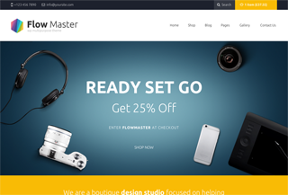 FlowMaster - WordPress Themes