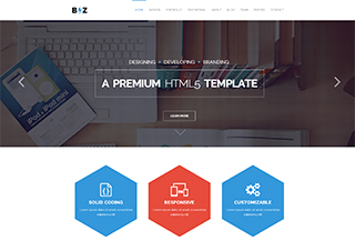 Biz - Business WordPress Theme