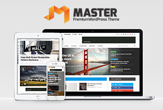 Master WordPress Theme