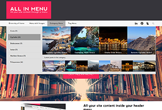 All In Menu - WP Plugin