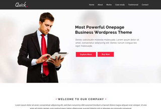 Quick Business WordPress Theme
