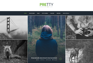 PRETTY - WordPress Theme