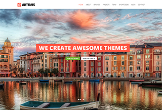 Artemis One Page WP Theme